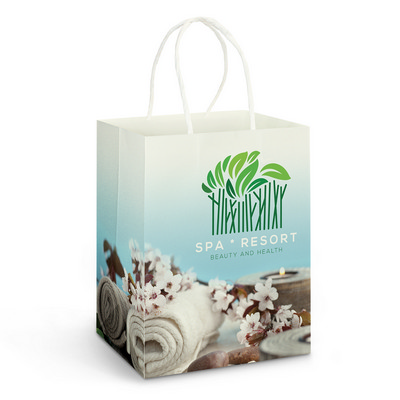 Picture of Large Paper Carry Bag  Full Colour