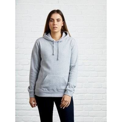 Picture of Wmns 300 Pullover Hoodie