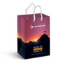 Small Laminated Paper Carry Bag  Full Co