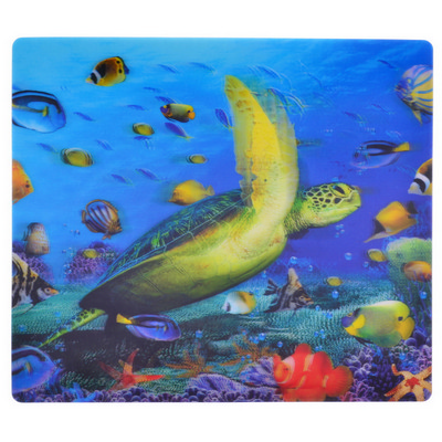 Picture of Hologram Mouse Mat