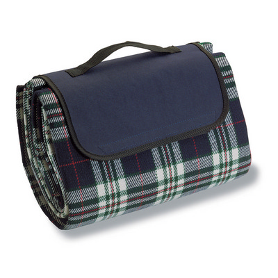 Picture of Picnic Rug - Blue