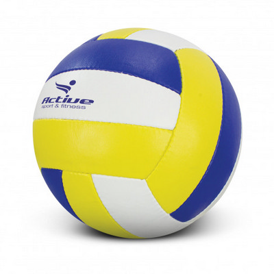 Picture of Volleyball Pro